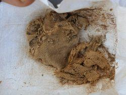 źródło: https://www.breakingisraelnews.com/83351/surprise-discovery-israeli-archaeologists-uncover-12th-dead-sea-scrolls-cave/#Wt6gQPm3RKQIH4Fj.97